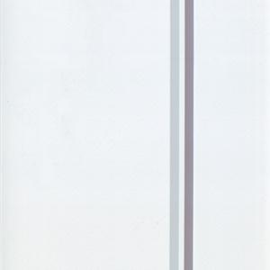 PVC-6461